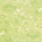 Нарцисс G салатный  30х30 см