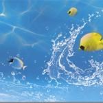 Кухонный фартук Рыбки (ПВХ пластик — фотопечать)