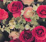 Кухонный фартук Розовый сад (ПВХ пластик — фотопечать)