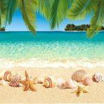 Кухонный фартук Песчаный пляж (ПВХ пластик)