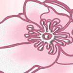 Агата розовая Бордюр Узоры