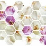 Шестигранник орхидеи